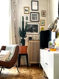 Mur de cadres et cactus