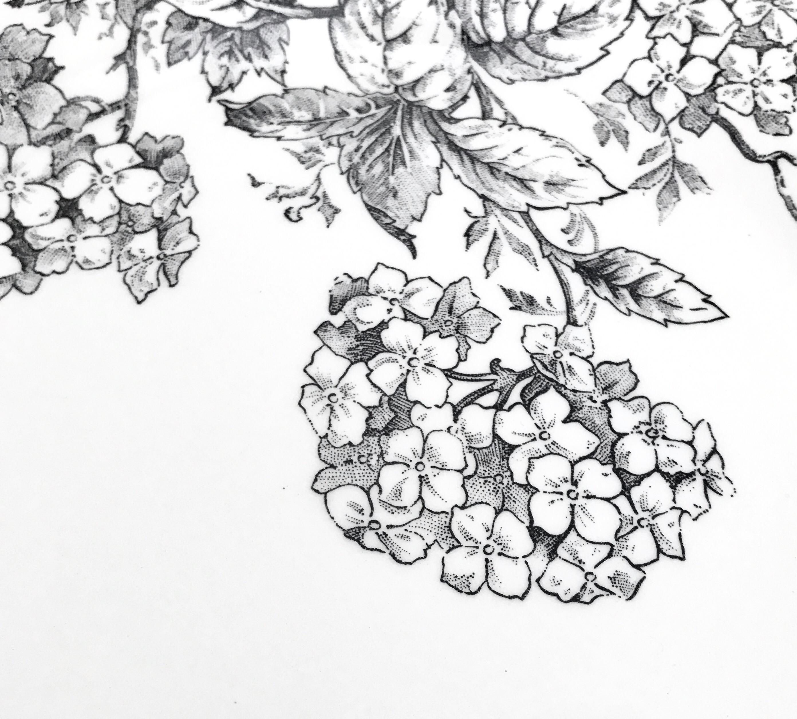 Assiette Gien pour Monoprix : motif hortensia